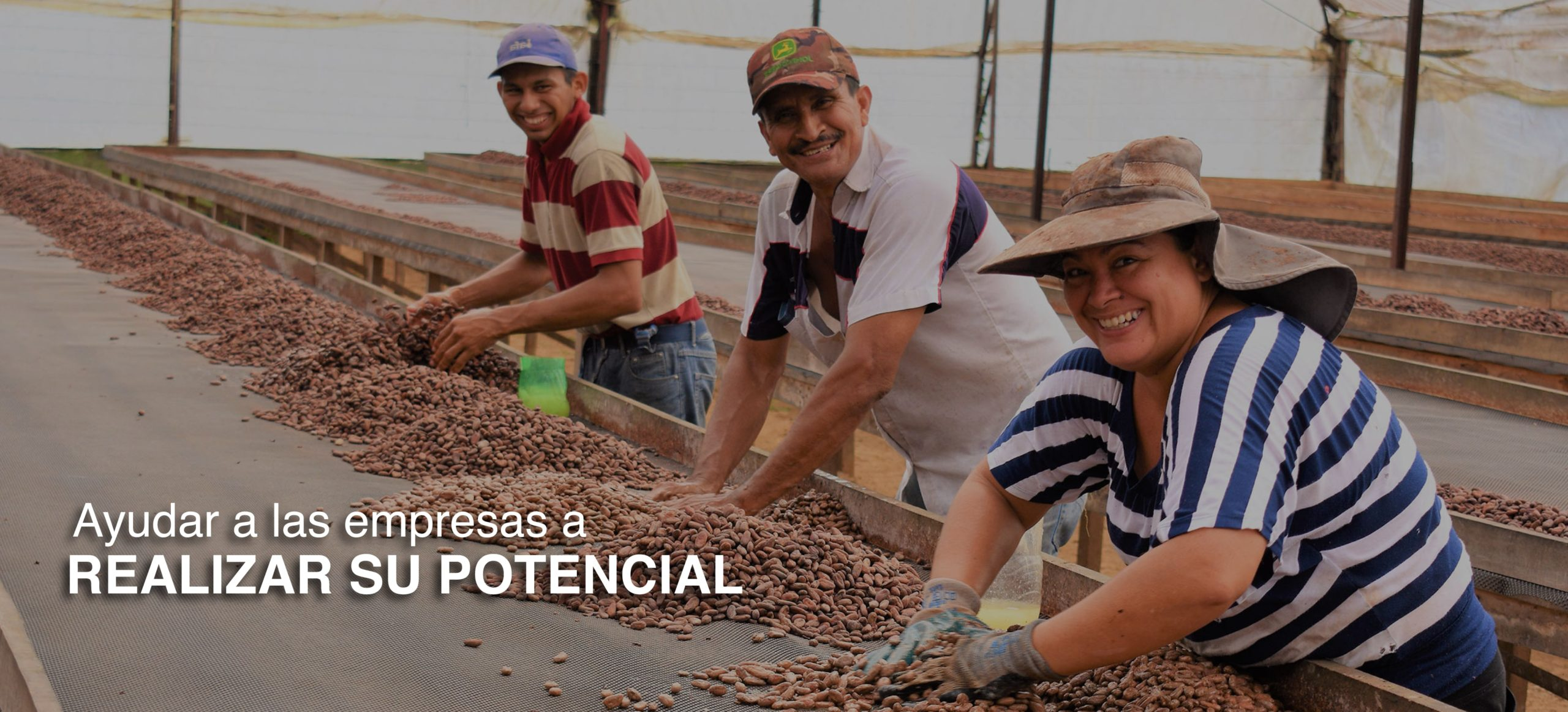 Group of smiling social impact workers sorting fine flavored cacao sourced from smallholder farmers in Latin America